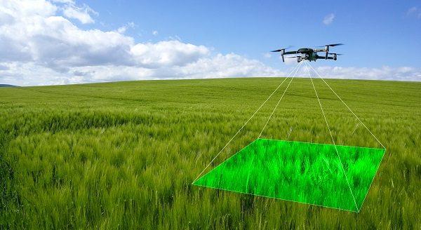 Innovation under the spotlight at Cereals LIVE 2020