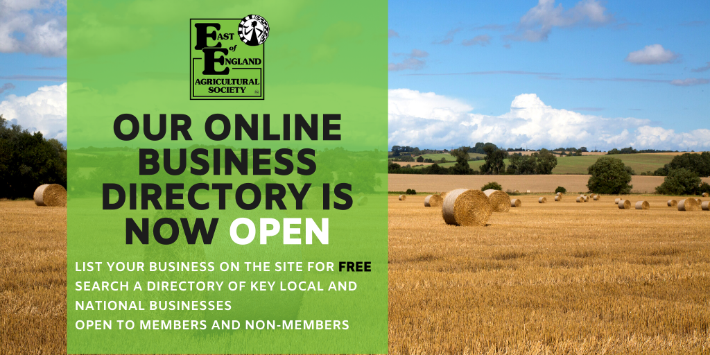 Our Online Business Directory is open!